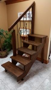 garde et escalier démo